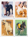 Dogs at Work 65¢ Postage Stamps